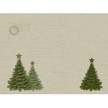 Duni papieren placemat Fir Forest 30x40 cm Productfoto