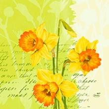 Duni Spring Flowers servet 33x33 cm dessin Productfoto