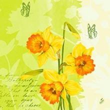 Duni Spring Flowers servet 40x40cm 3-laags dessin Productfoto