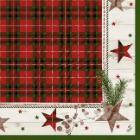 Duni Naturally Christmas tissue servet 40x40cm 4-laags Productfoto