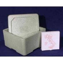 Isolierbehälter für Pizza 35x35x18 innen Produktbild