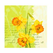Serviette Zelltuch 33 cm x 33 cm 3-lagig 1/4 Falz Spring Flowers Produktbild