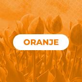 KING-NL-Oranjehoek
