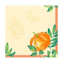 Servet dessin pumpkin spice dunisoft 40x40cm Artikel foto